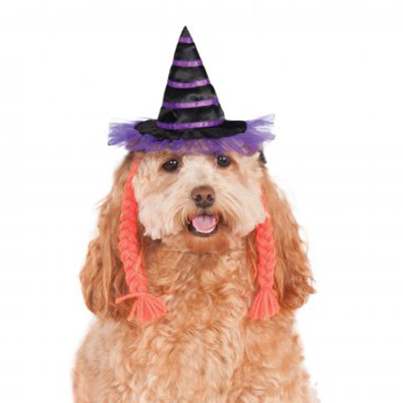 Purple Witch Dog Hat with Braids