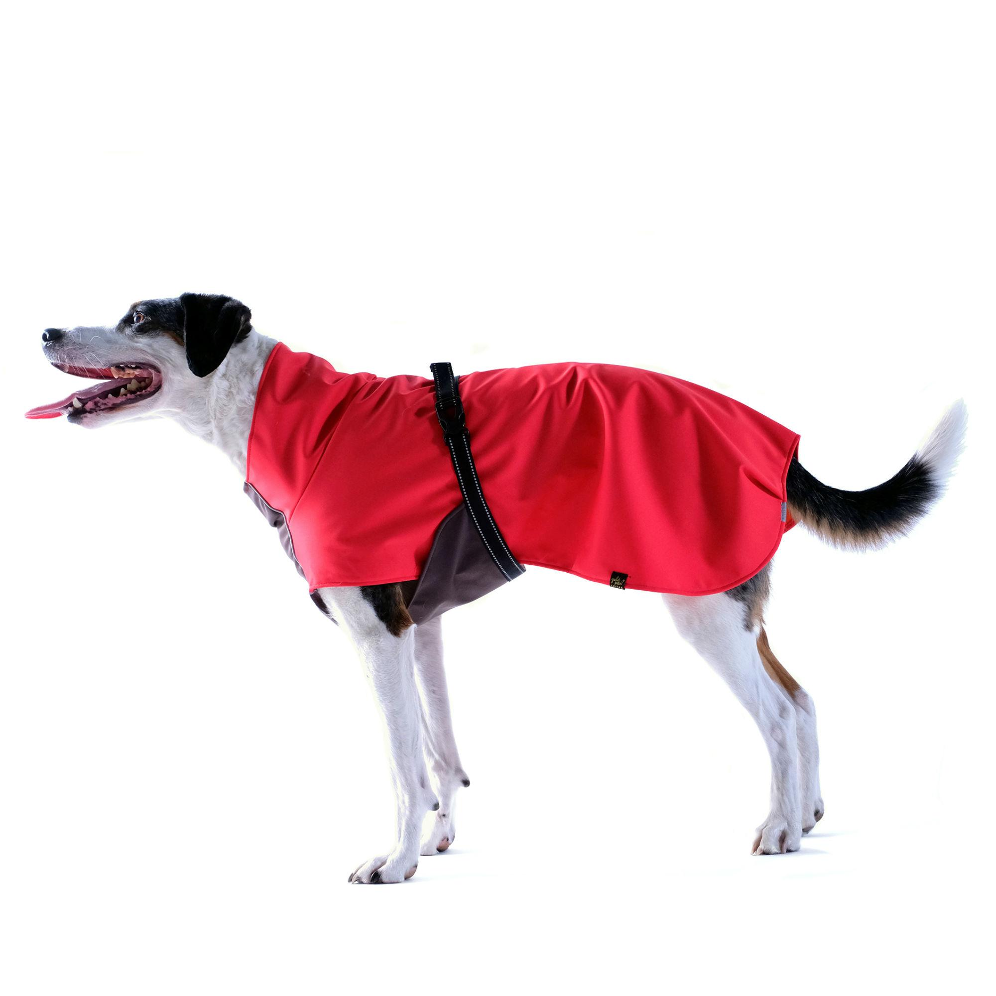 Rain Paw Dog Raincoat by Gold Paw - Red/Graphite