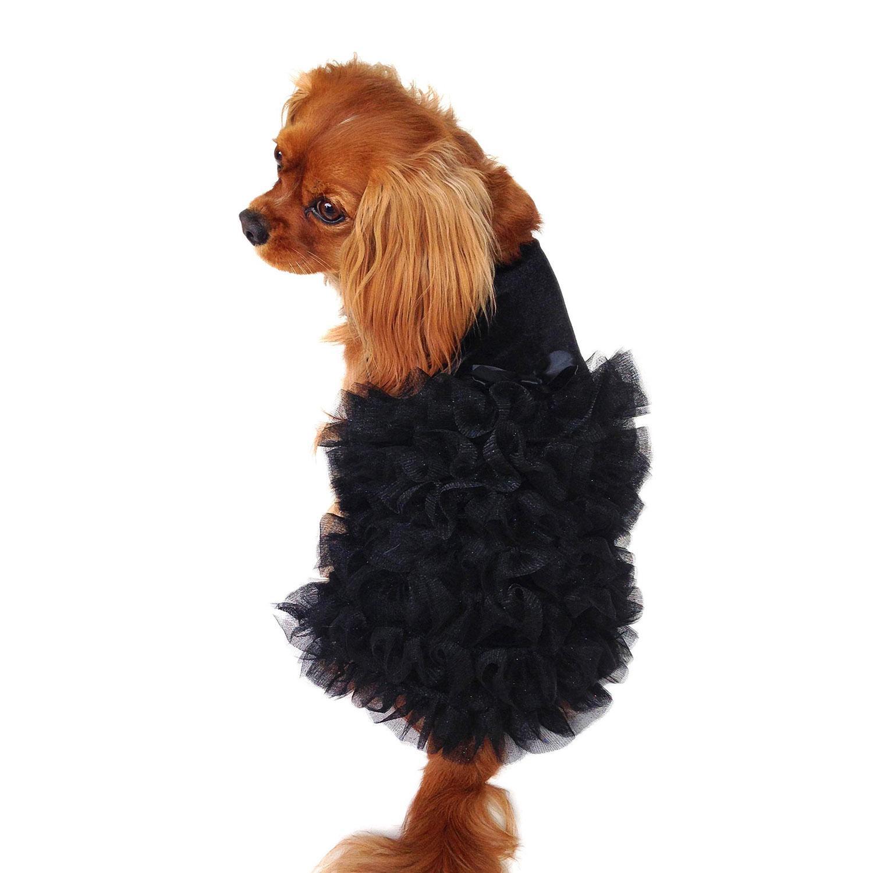 Red Carpet Ruffle Dog Dress -  Black
