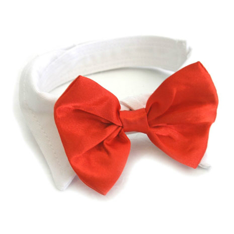 Red Satin Bowtie Collar by Doggie Design