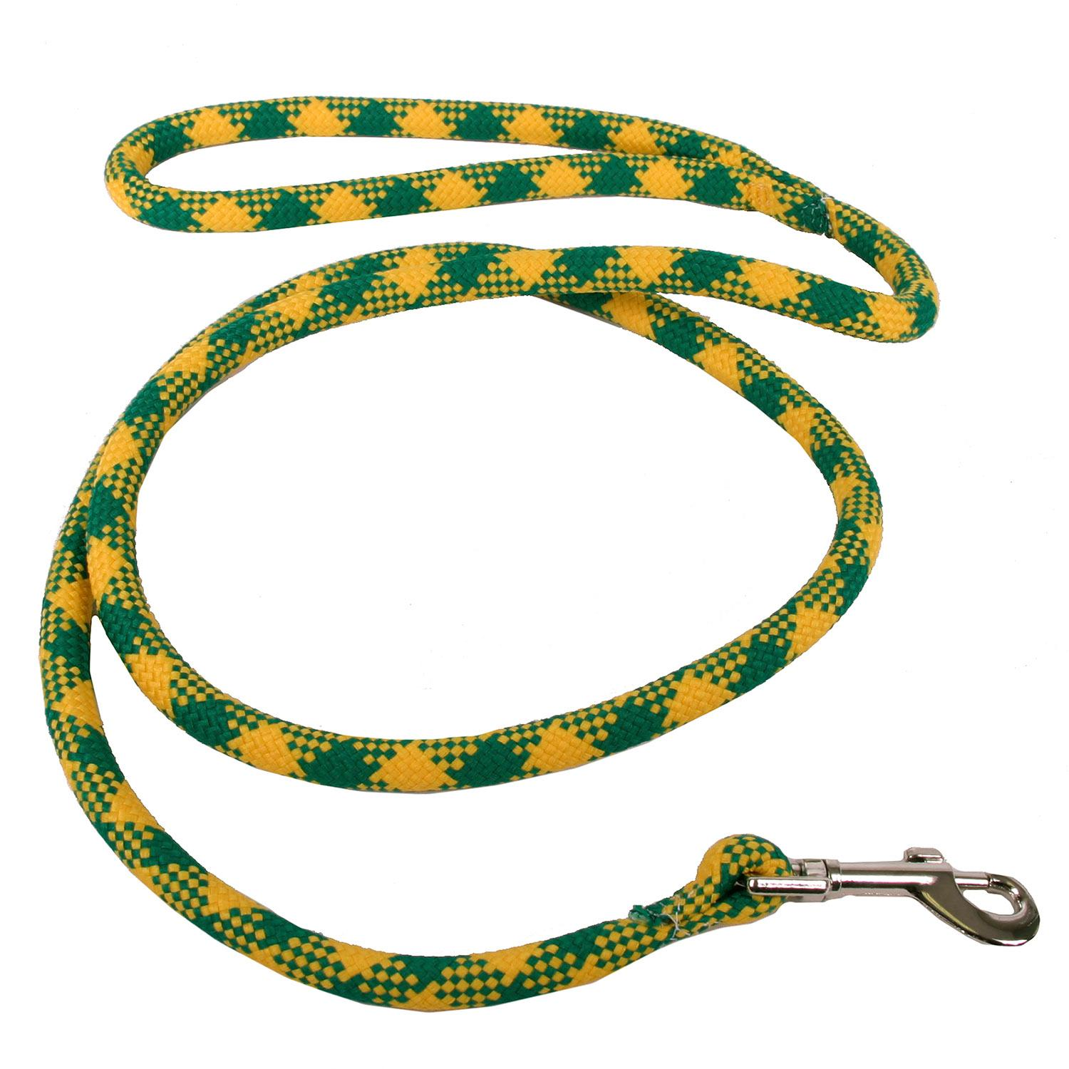 Round Braided Team Colors Dog Leash by Yellow Dog - Gold and Green
