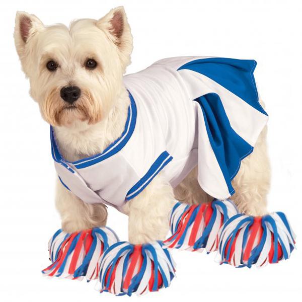 Rubie\'s Cheerleader Halloween Dog Costume - Blue with Same Day ...