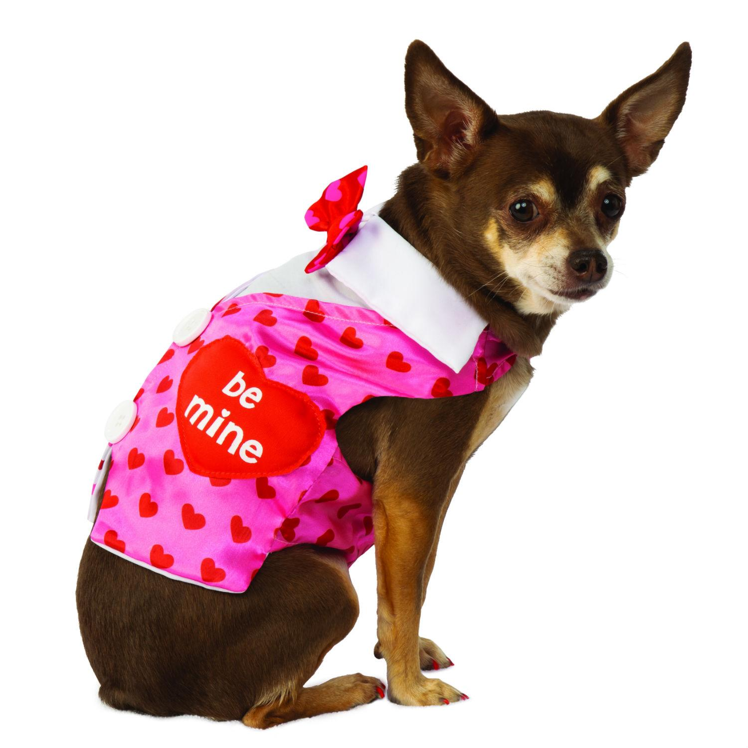Rubies Valentines Day Sweetheart Dog Vest
