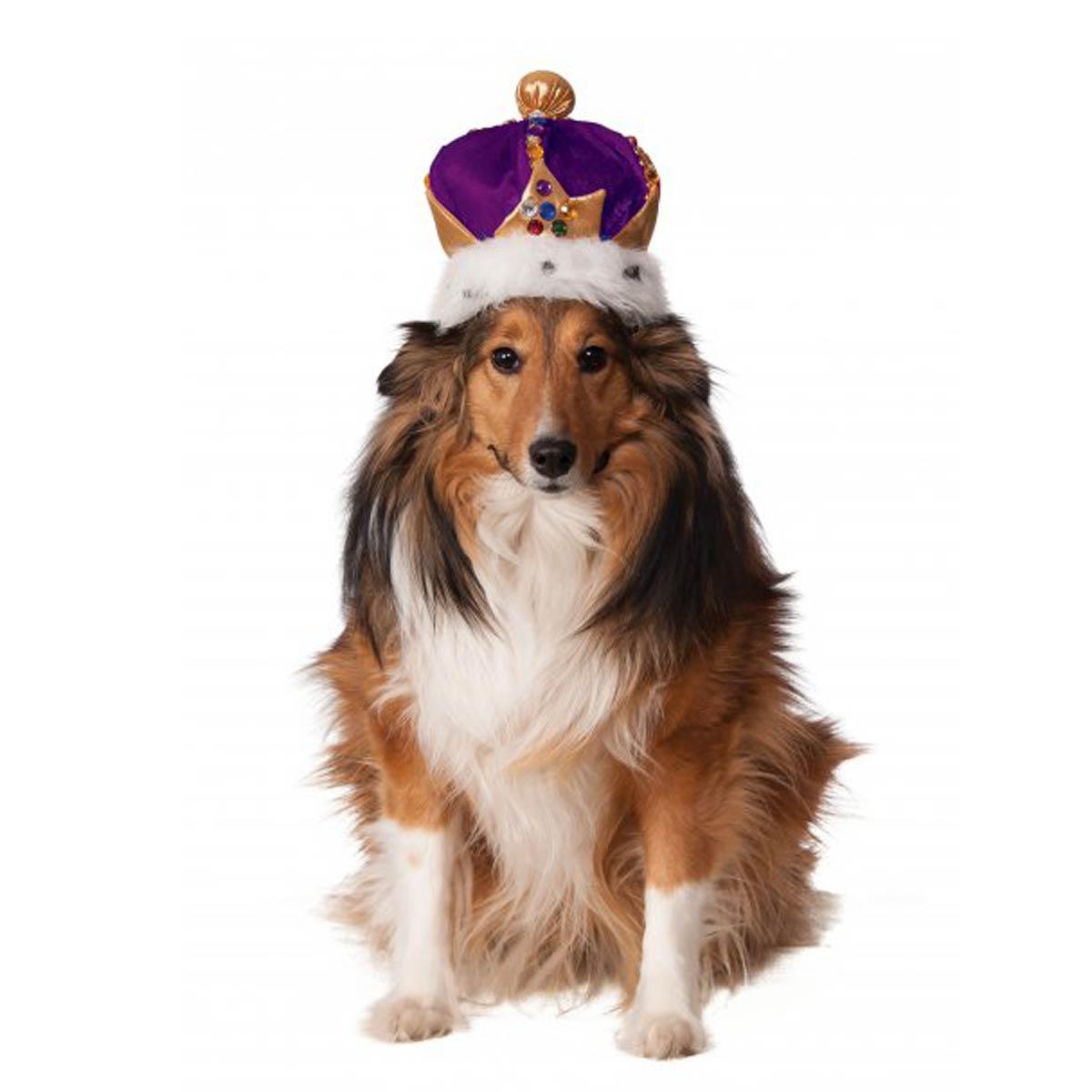 Rubies King's Crown Dog Hat - Purple