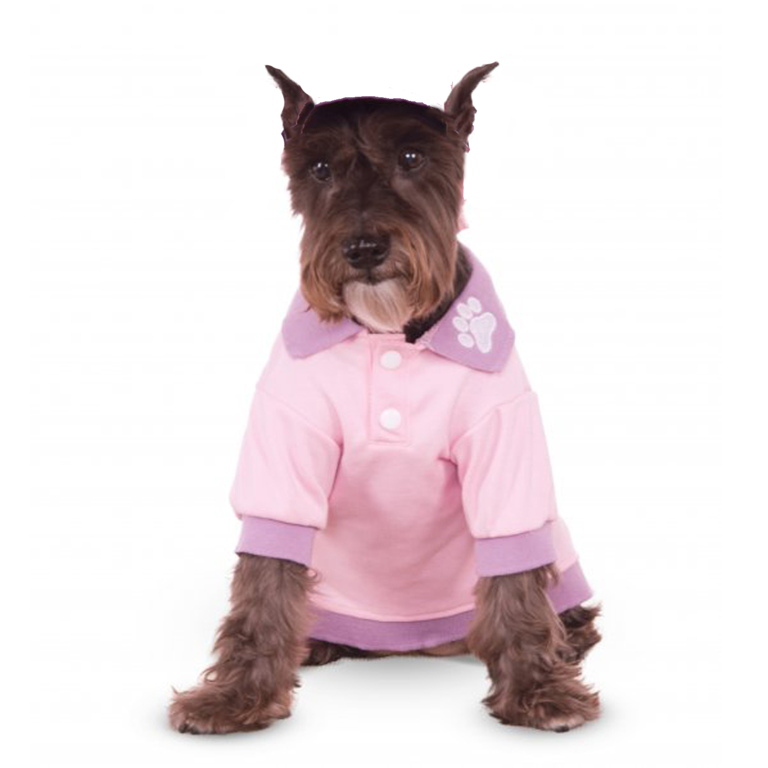 Rubies Pastel Dog Polo - Pink