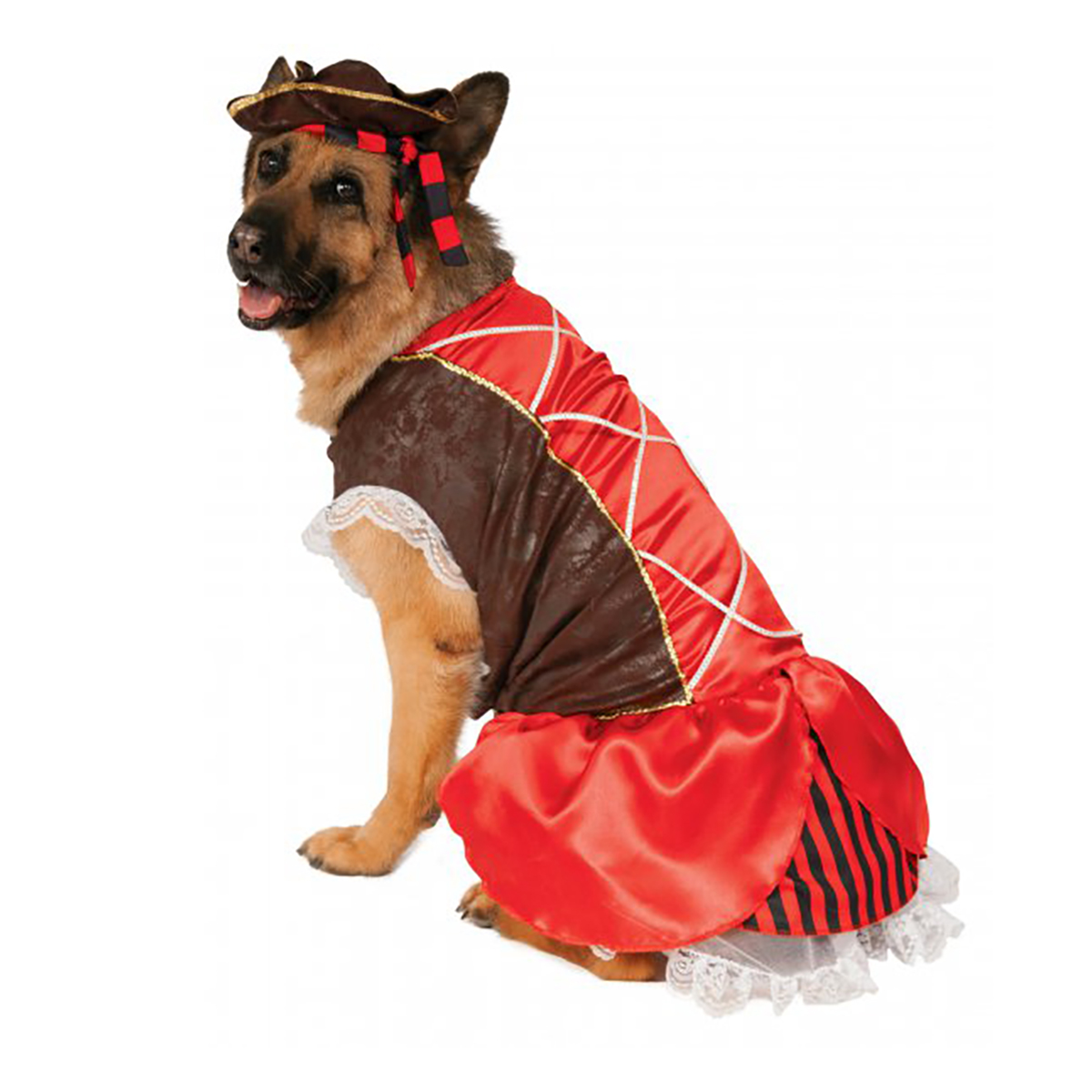 Rubies Pirate Girl Dog Costume - Big Dog Edition  sc 1 st  BaxterBoo : girl dog costume  - Germanpascual.Com