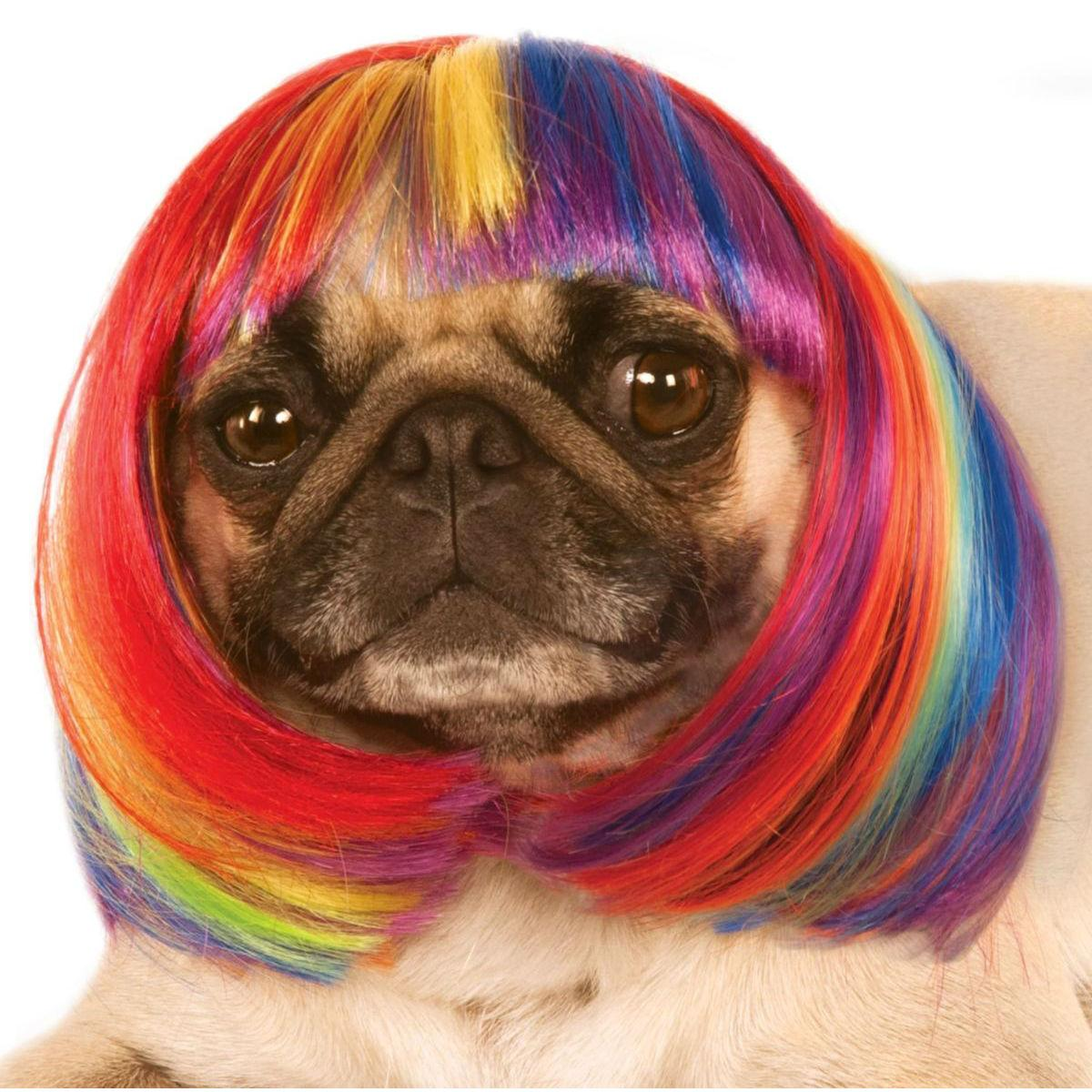 Rubies Rainbow Bob Wig Dog Costume
