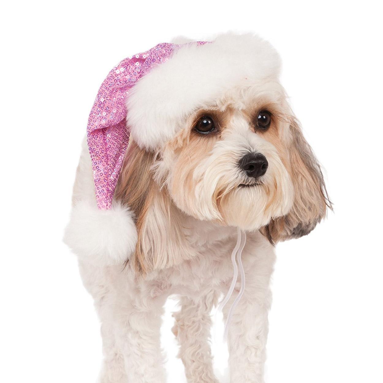Rubie's Sequin Santa Dog Hat - Pink