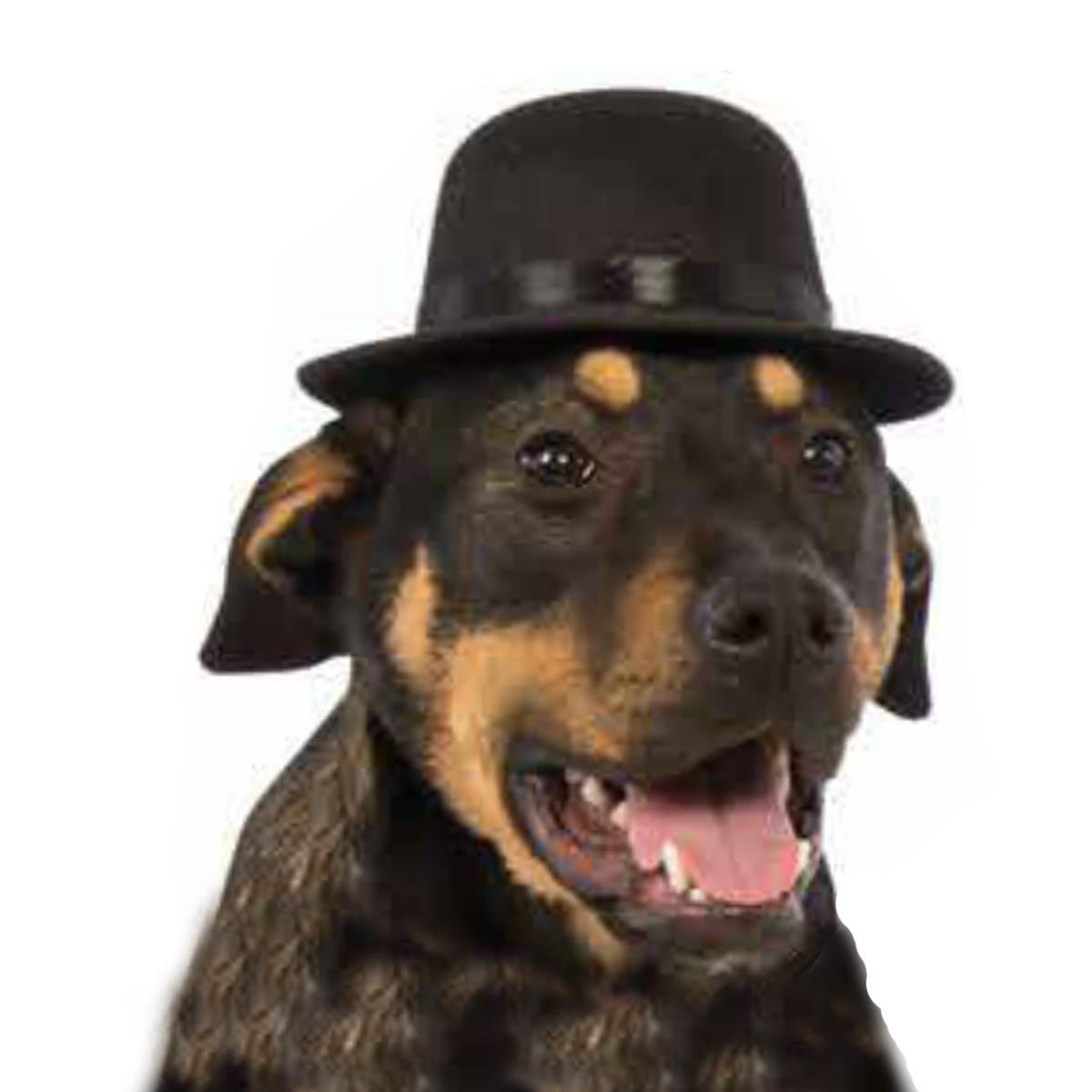 Rubie's Top Hat Dog Costume - Black