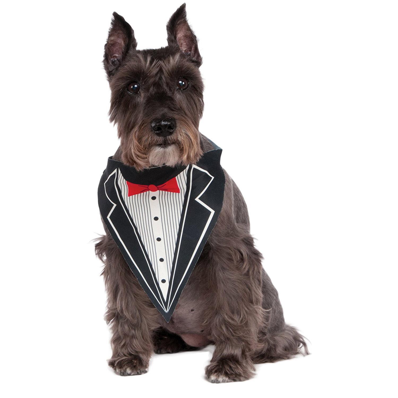 Rubie's Tuxedo Dog Bandana