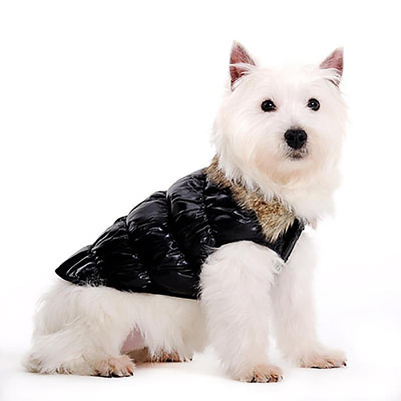 Ruched Bubble Dog Jacket by Dogo - Black