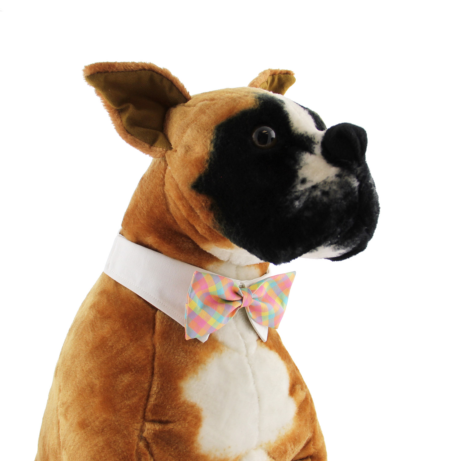 3f977d7bc37c Riley Dog Shirt Collar and Bow Tie - Pastel P... | BaxterBoo
