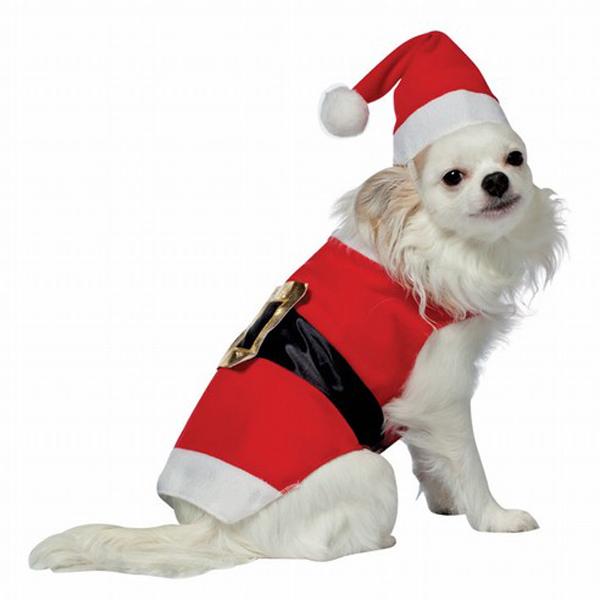 Santa Dog Costume by Rasta Imposta