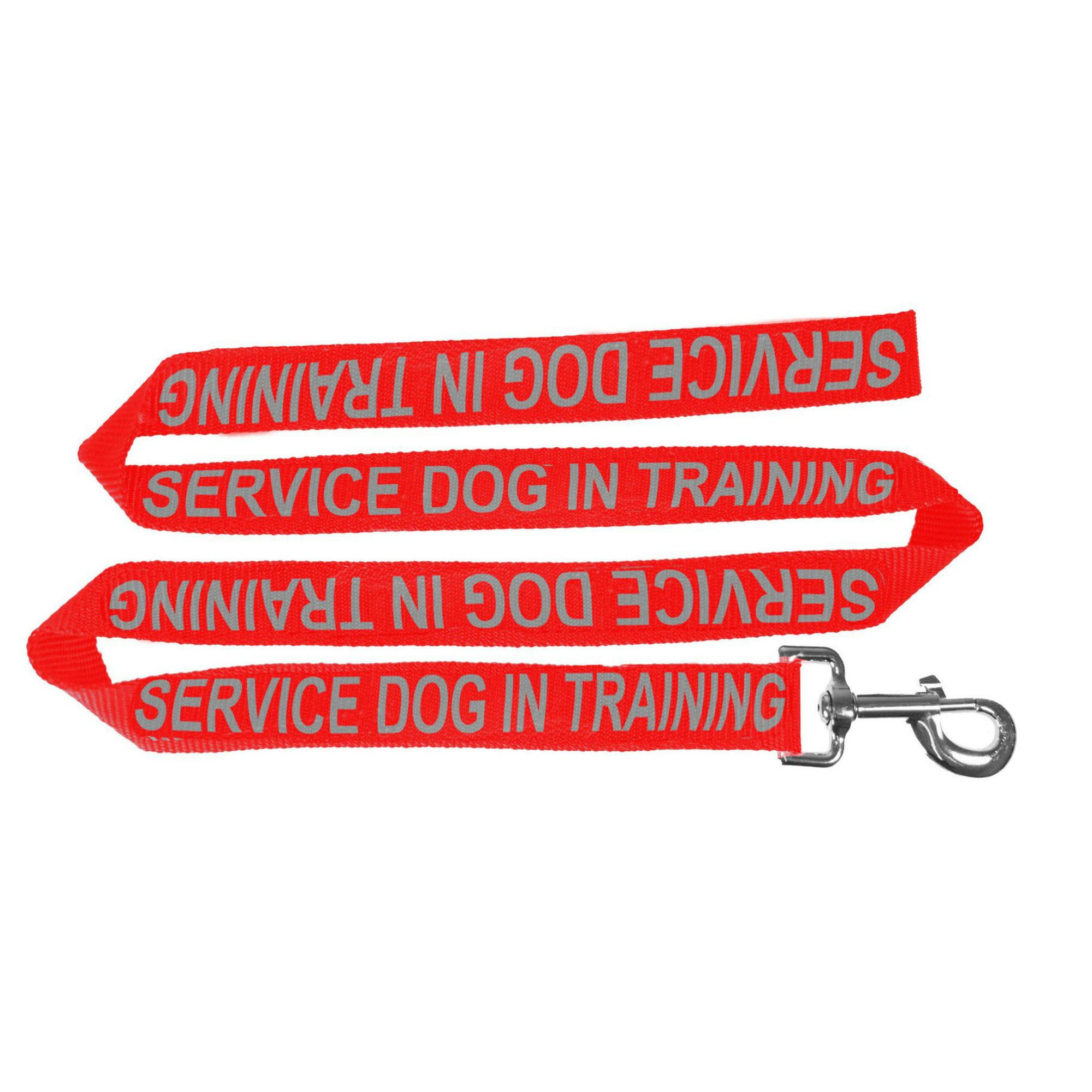 Service Dog In Training  Dog Leash - Red