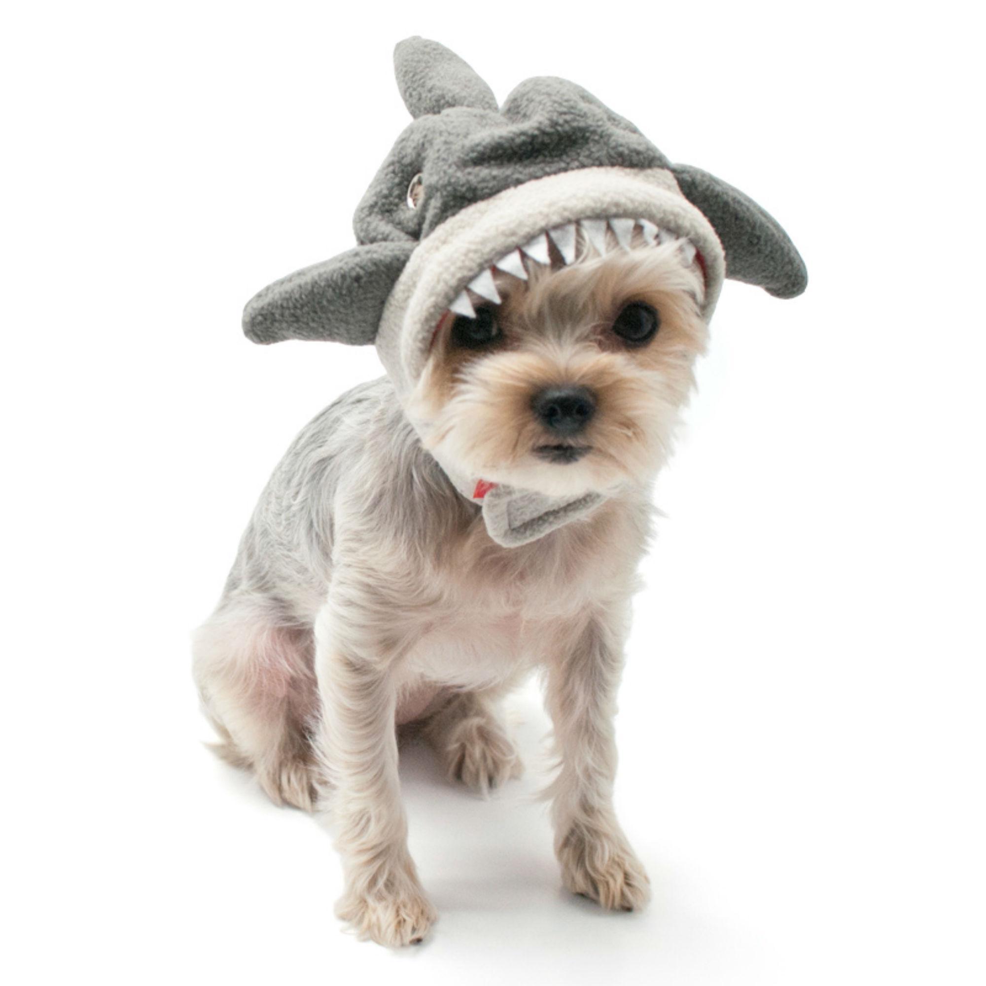 Shark Dog Hat by Dogo