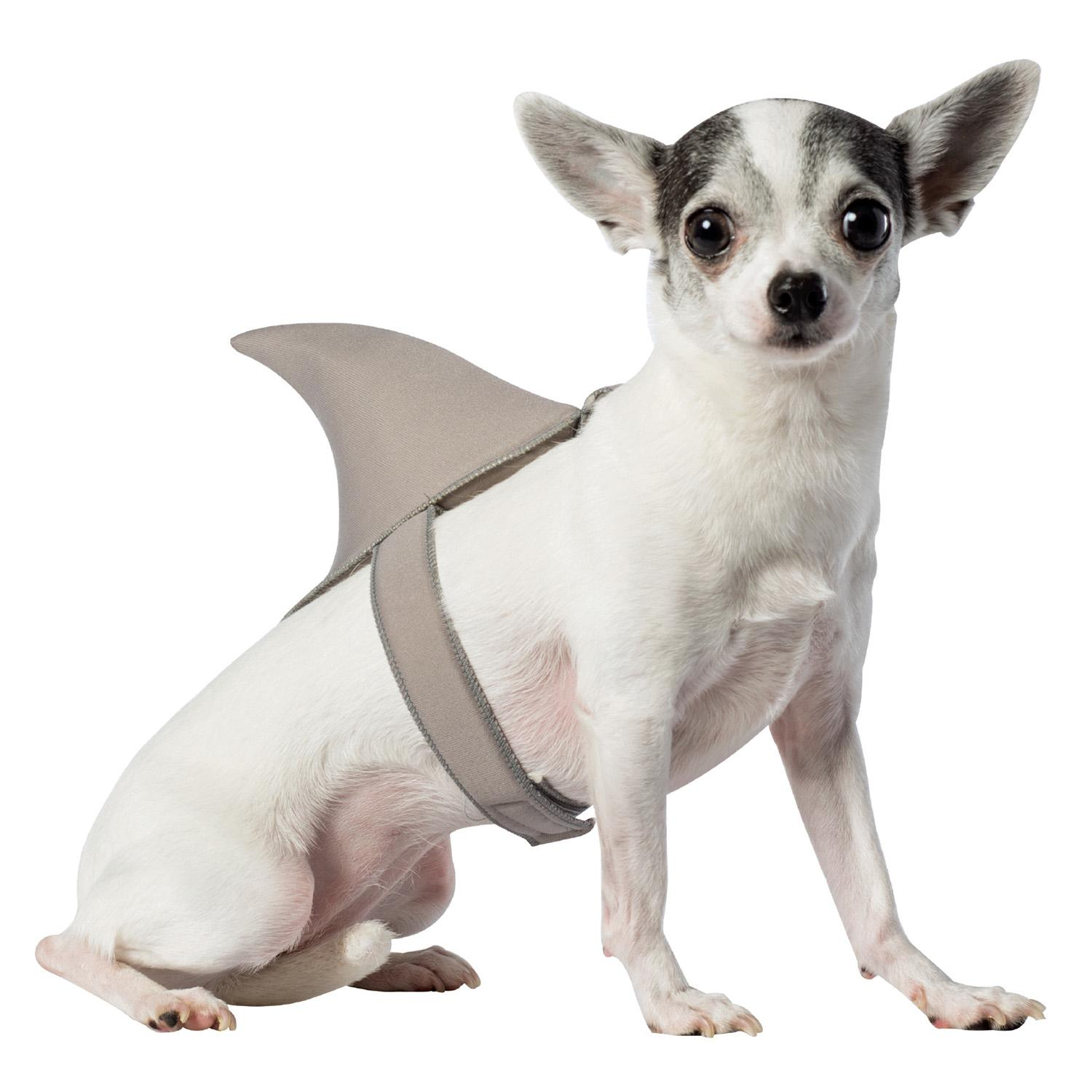 Shark Costumes For Large Dogs