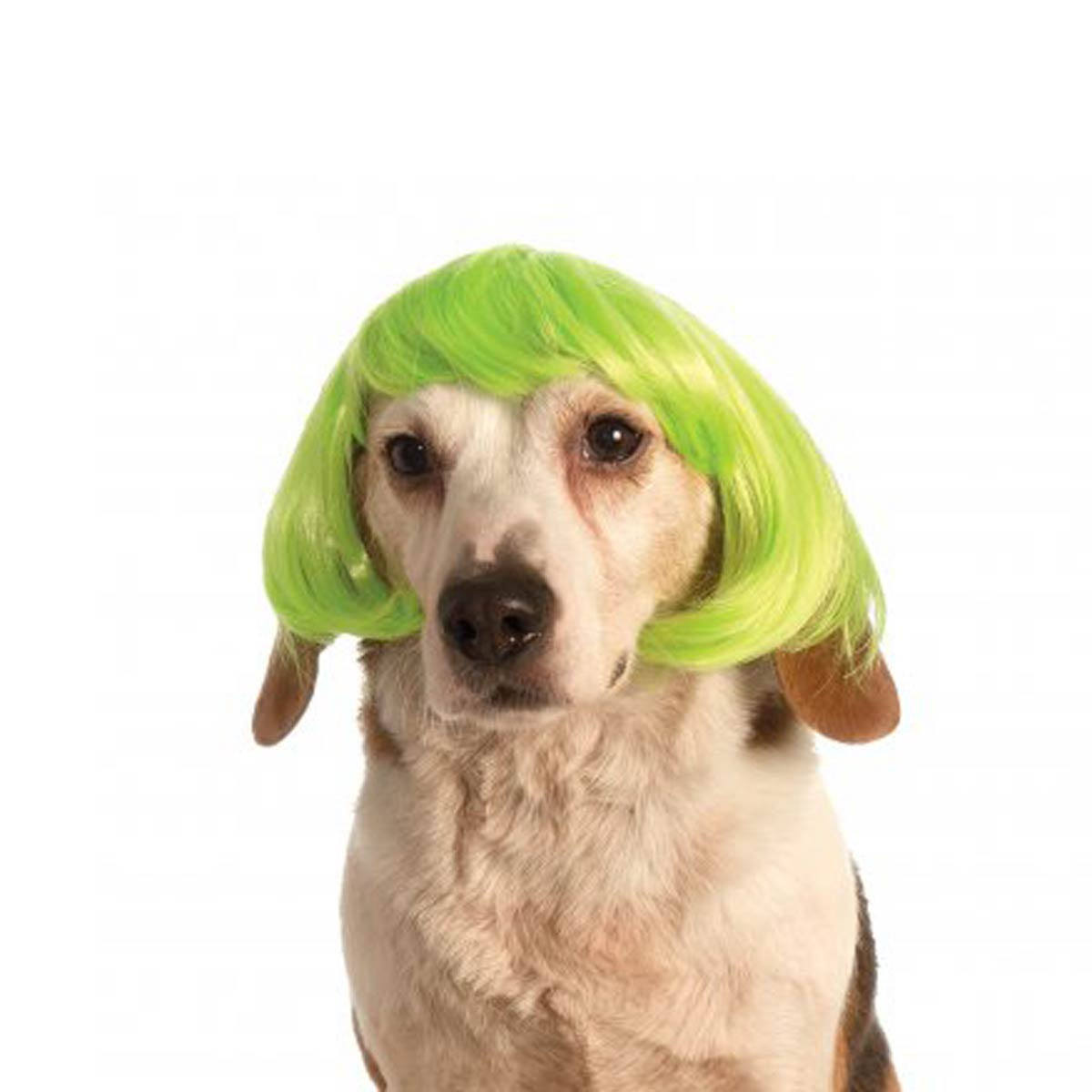 Short Bob Wig Dog Costume - Neon Green