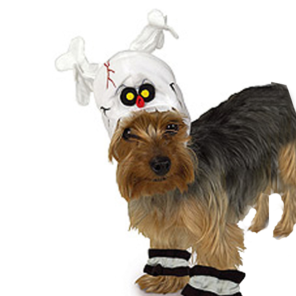 Skeleton Halloween Dog Costume Hat