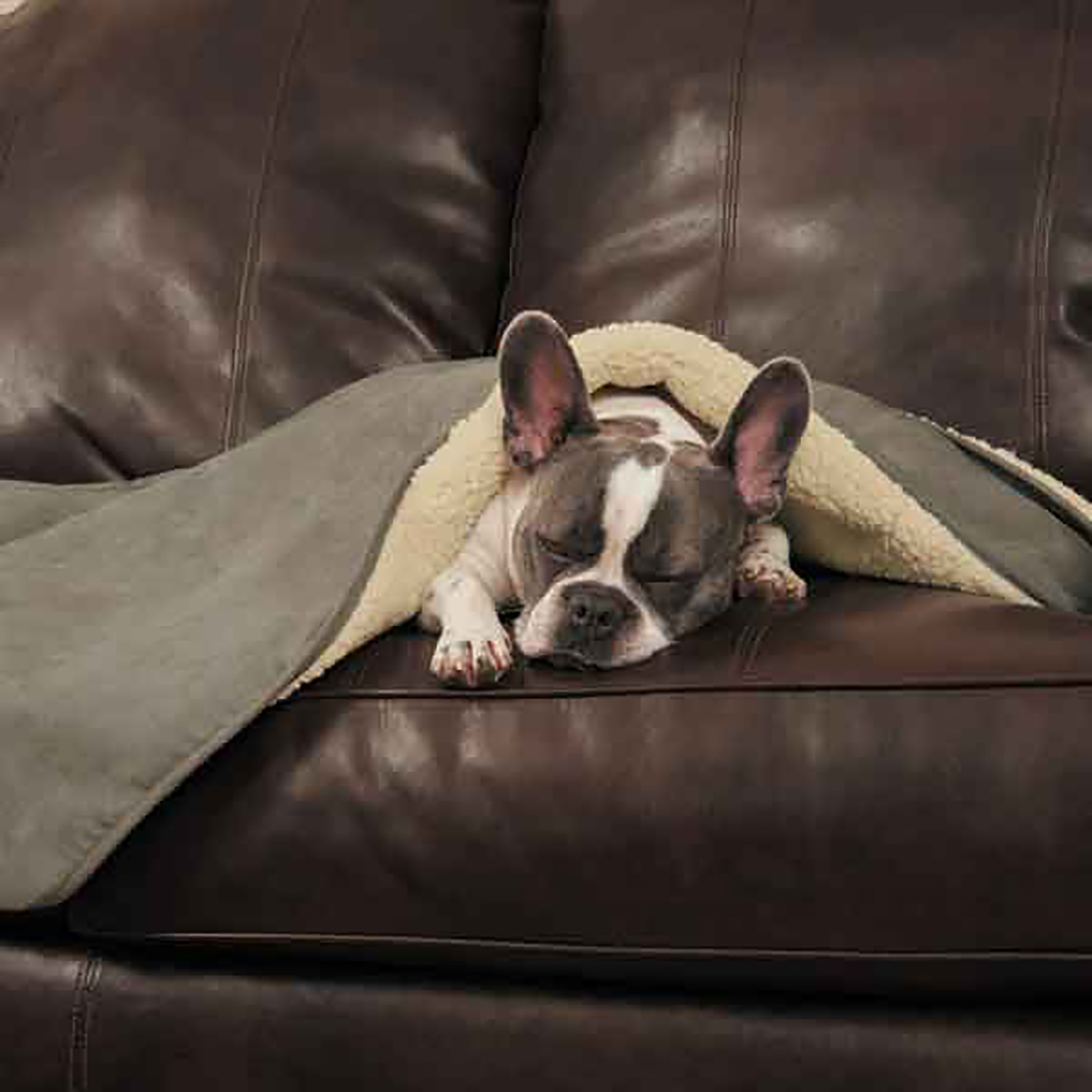 Slumber Pet ThermaPet Burrow Dog Blanket