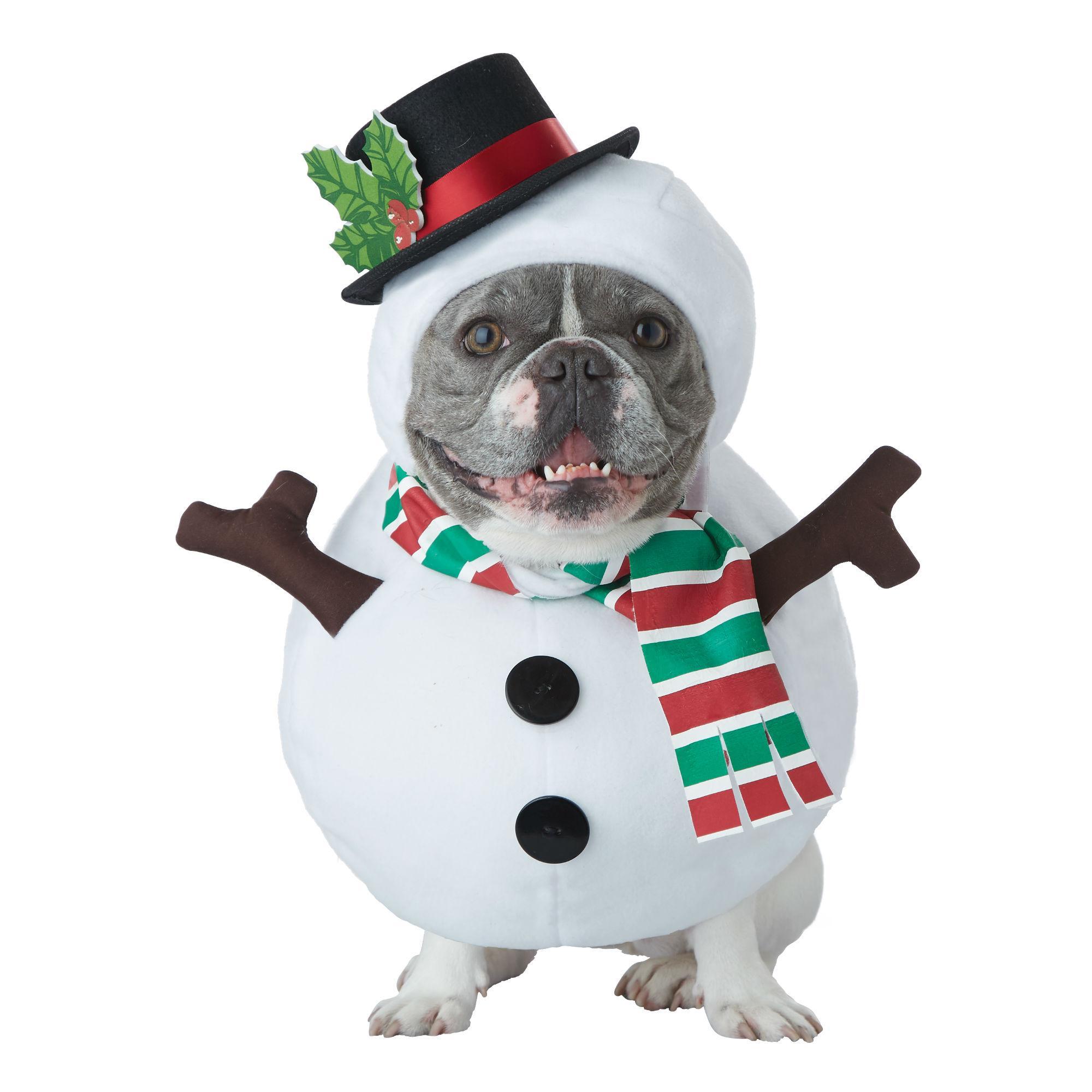 Snowman Dog Holiday Dog Costume