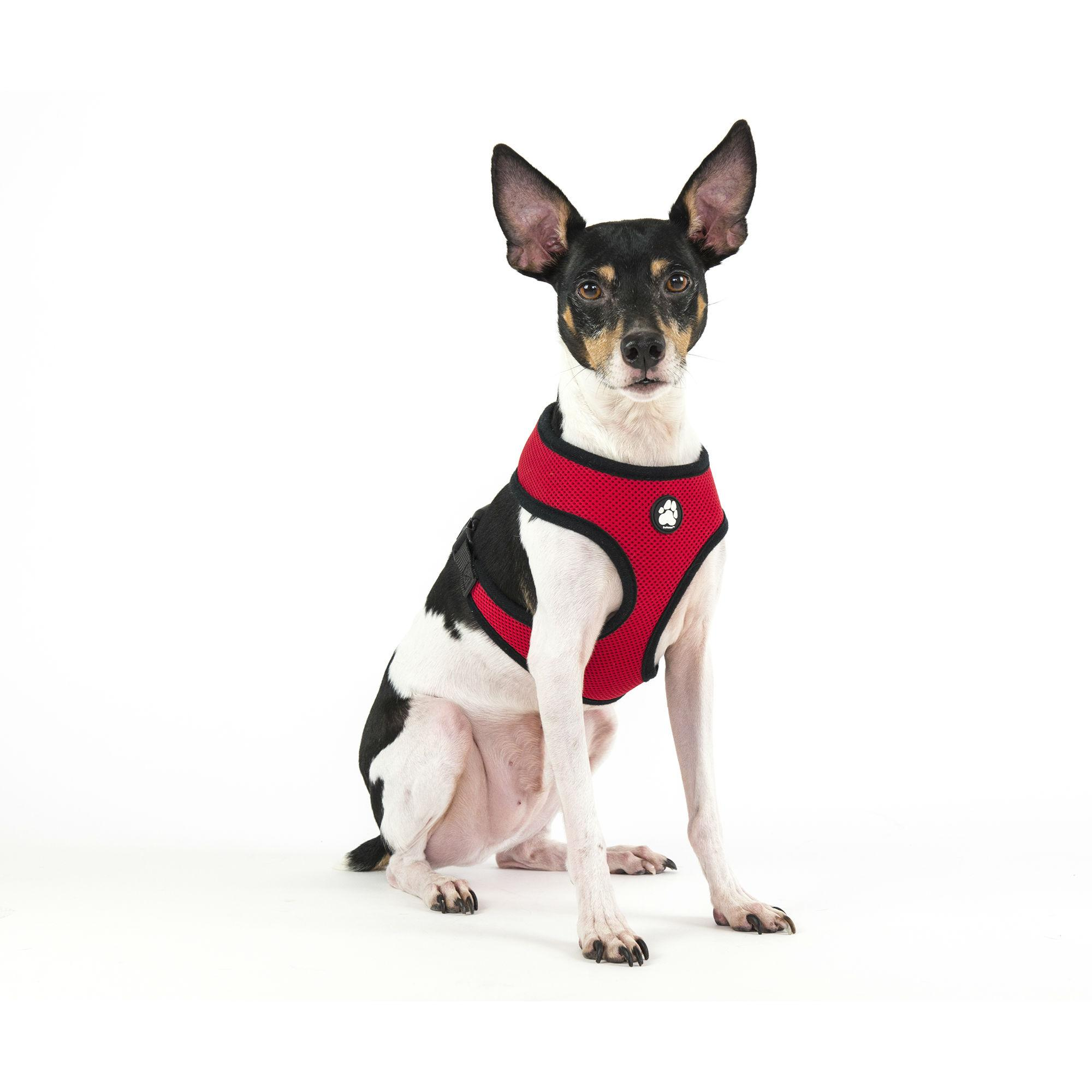 Soft & Comfy Mesh Dog Harness - Red
