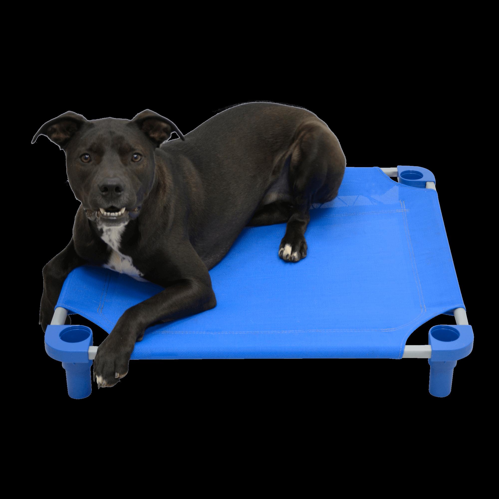 Solid Color Premium Weave Dog Cot - Blue