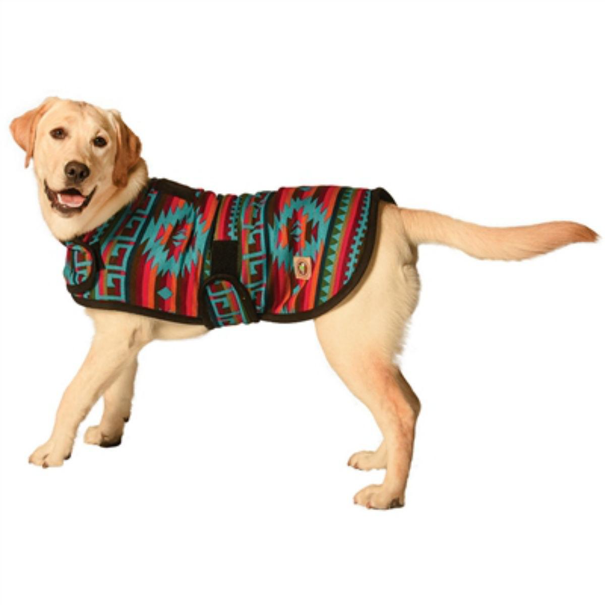 Southwest Desert Rose Blanket Dog Coat