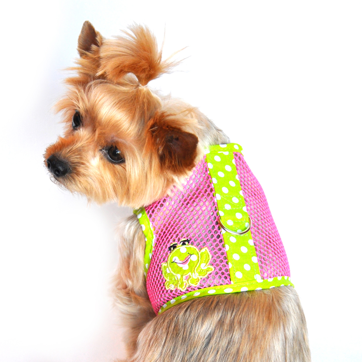 Spotted Frog Mesh Dog Harness by Doggie Design - Green and Pink