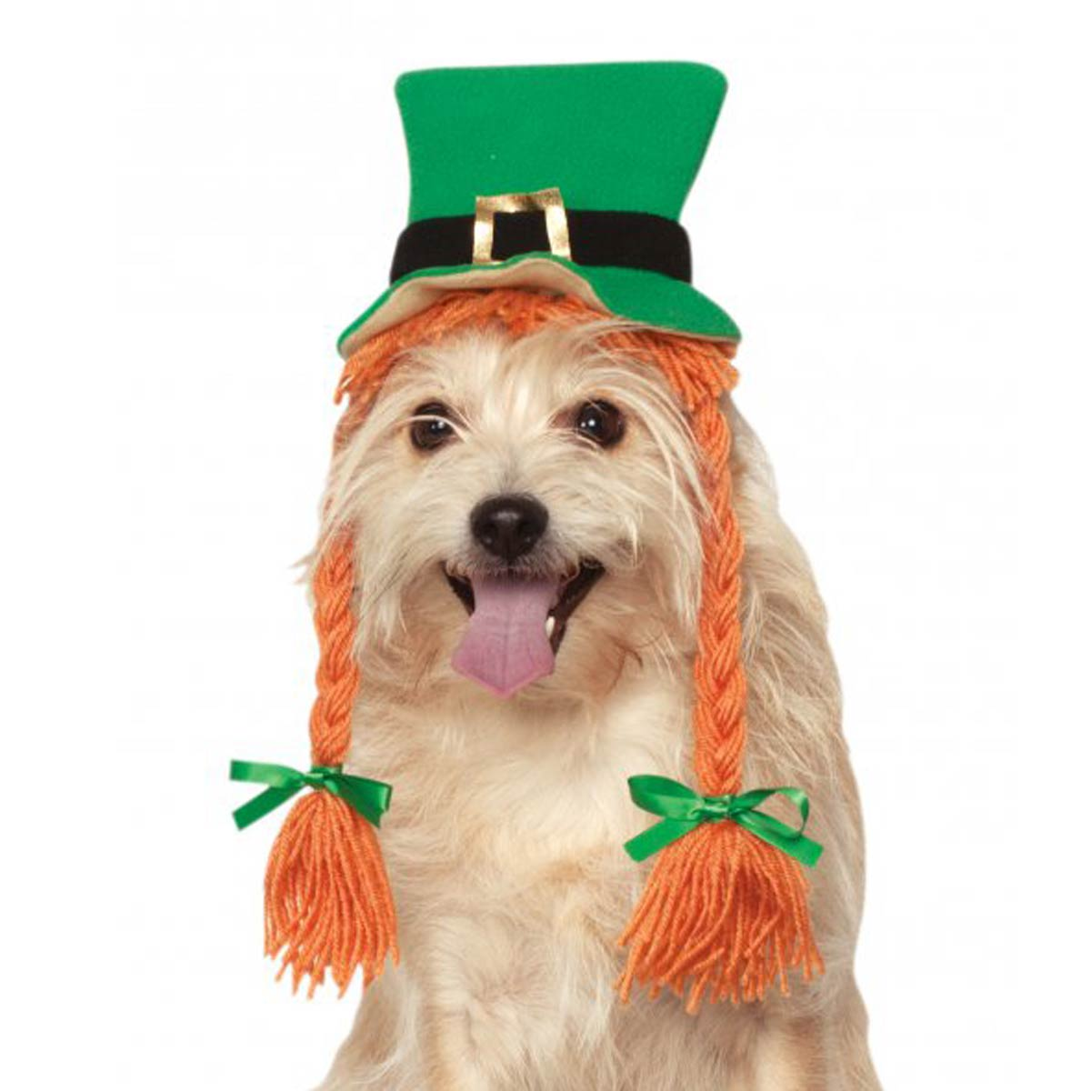 St Patty's Day Dog Hat with Braids