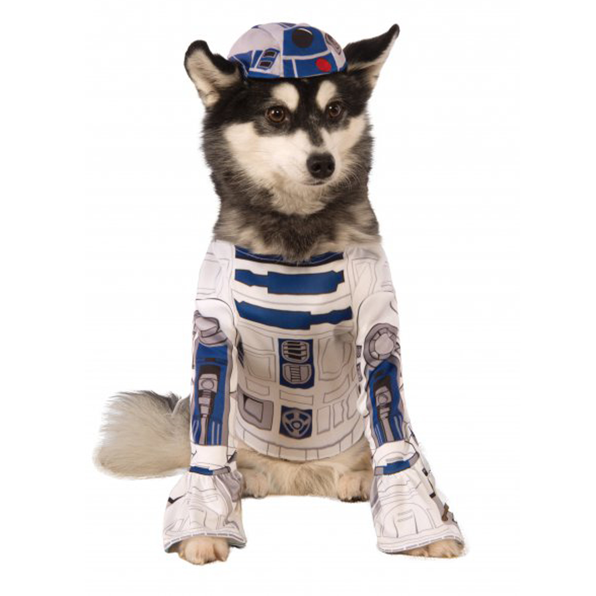 star wars r2-d2 dog costume with same day shipping | baxterboo
