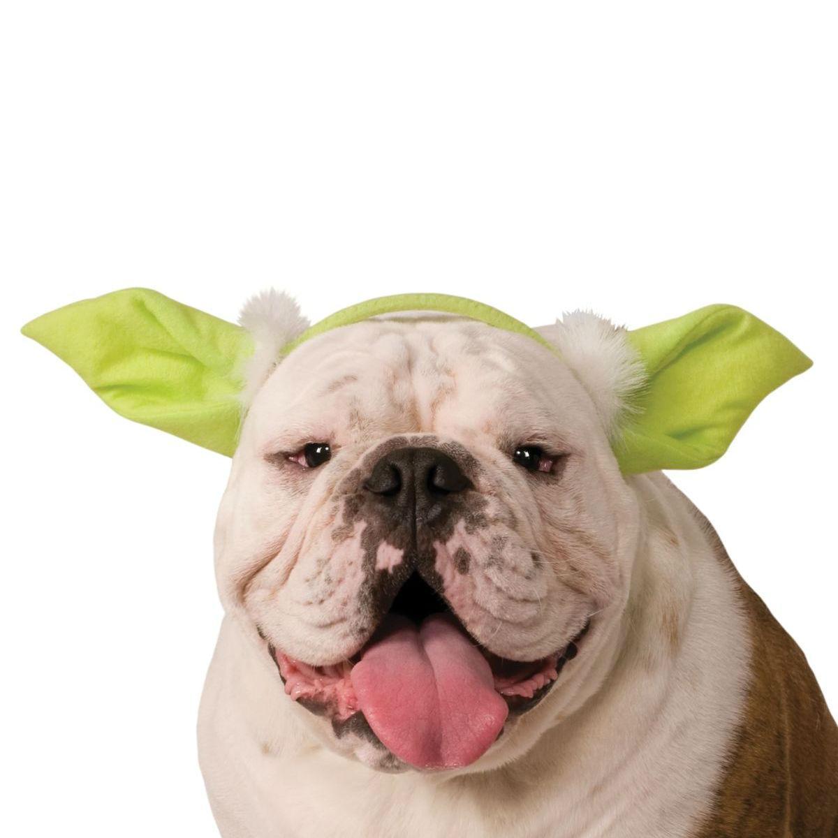 Star Wars Yoda Ears Dog Costume