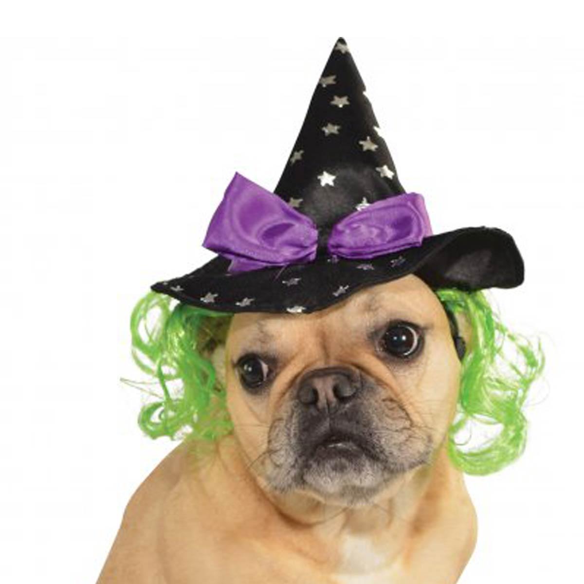 Star Witch Dog Hat