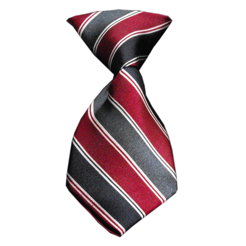 Striped dog neck tie classic with same day shipping baxterboo striped dog neck tie classic ccuart Image collections