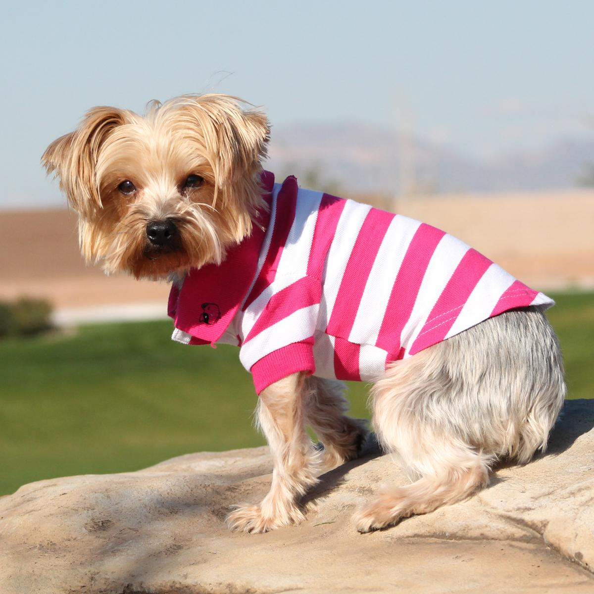 Striped Dog Polo by Doggie Design - Pink Yarrow and White