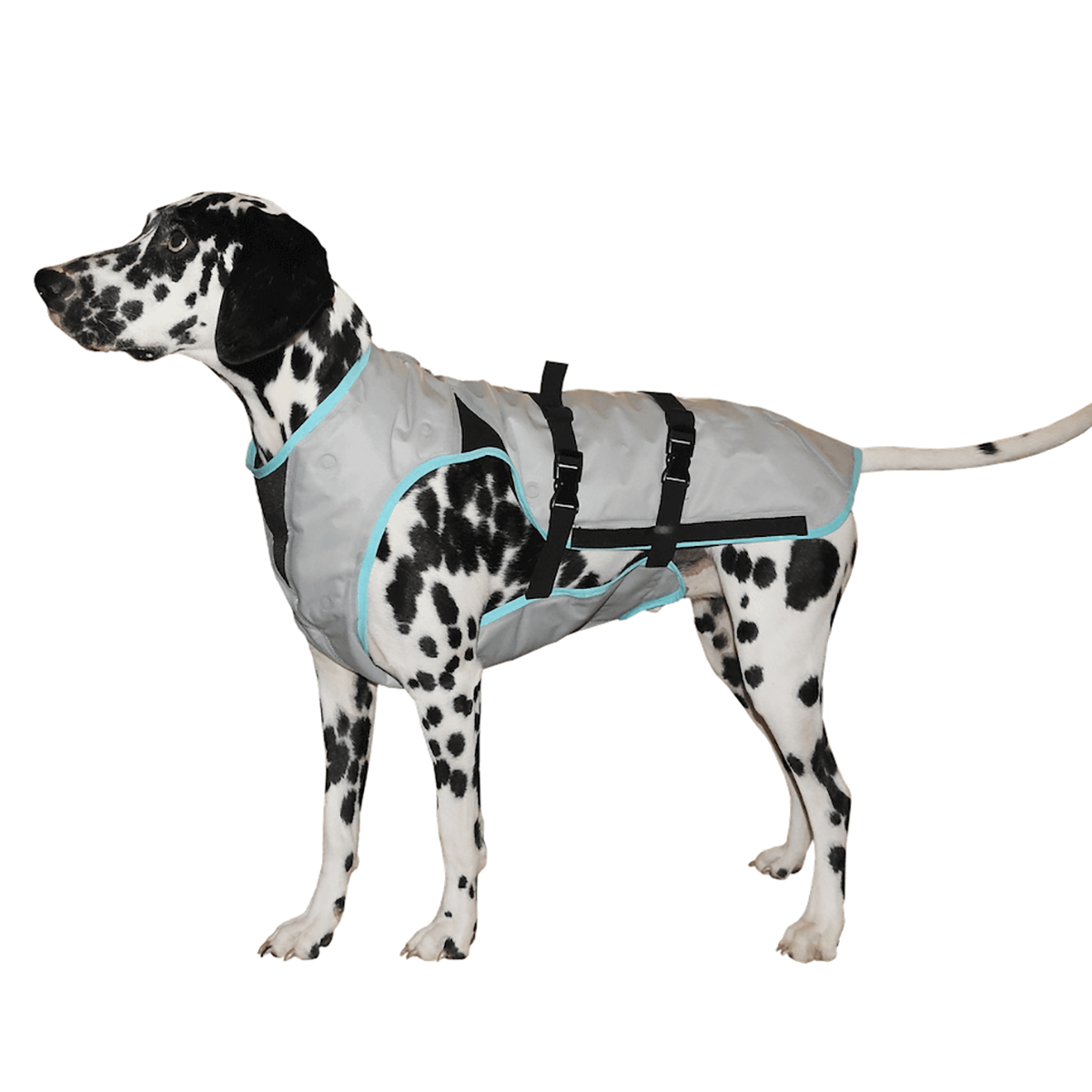 Suitical Dry Cooling Dog Vest