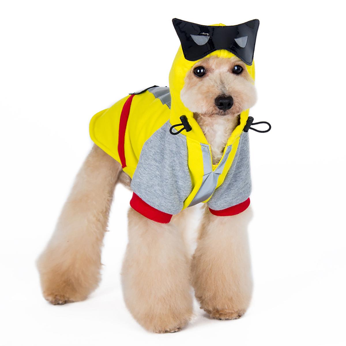 the latest f3904 a967c Dog Sweatshirts | BaxterBoo