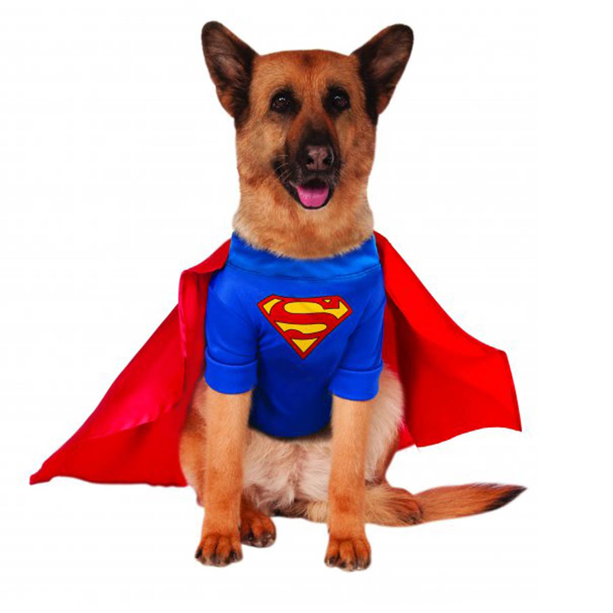 Superman Dog Halloween Costume by Rubies - Big Dog Edition