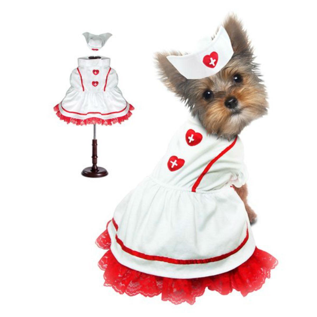 Sweet Heart Nurse Halloween Dog Costume