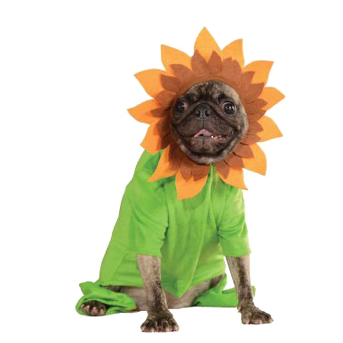 Sweet Sunflower Dog Costume