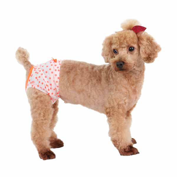 Taffy Dog Sanitary Panty by Puppia - Orange
