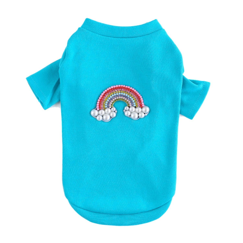 Rainbow Dog T-Shirt by Hello Doggie - Aqua