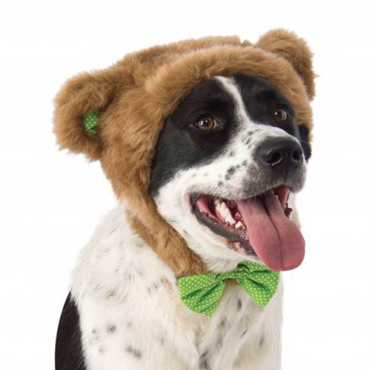 Teddy Bear Hat Dog Costume