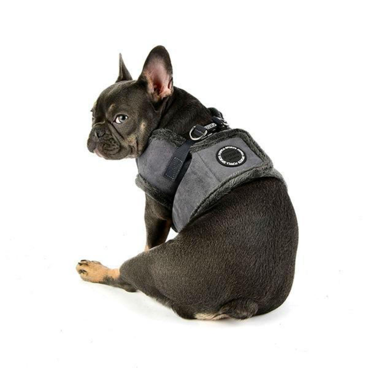 Terry Vest Dog Harness by Puppia - Gray