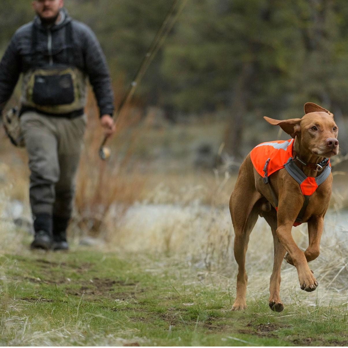 Track Dog Jacket by RuffWear - Blaze Orange