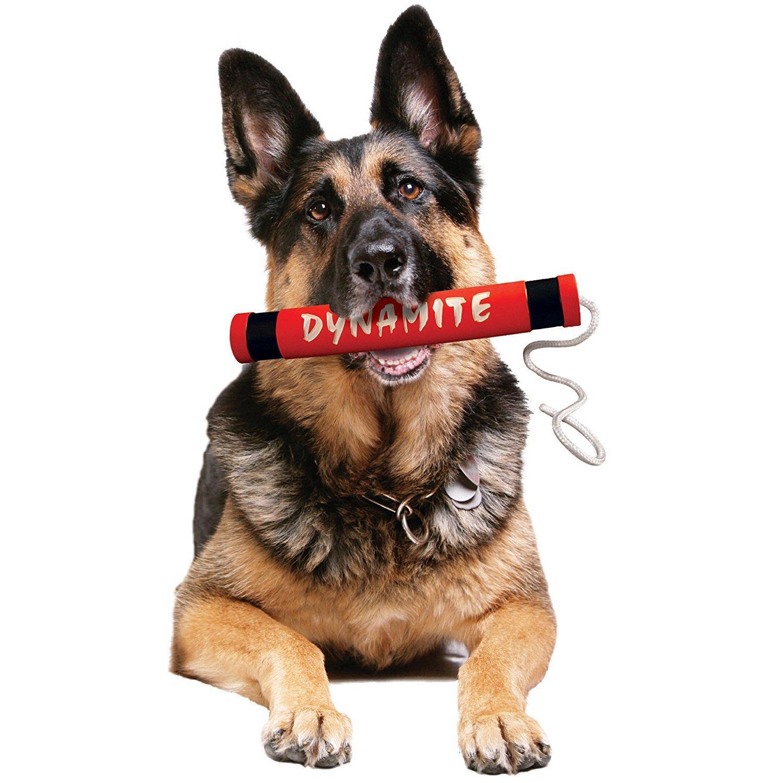 Tuffy Rugged Rubber Dog Toys - Dynamite