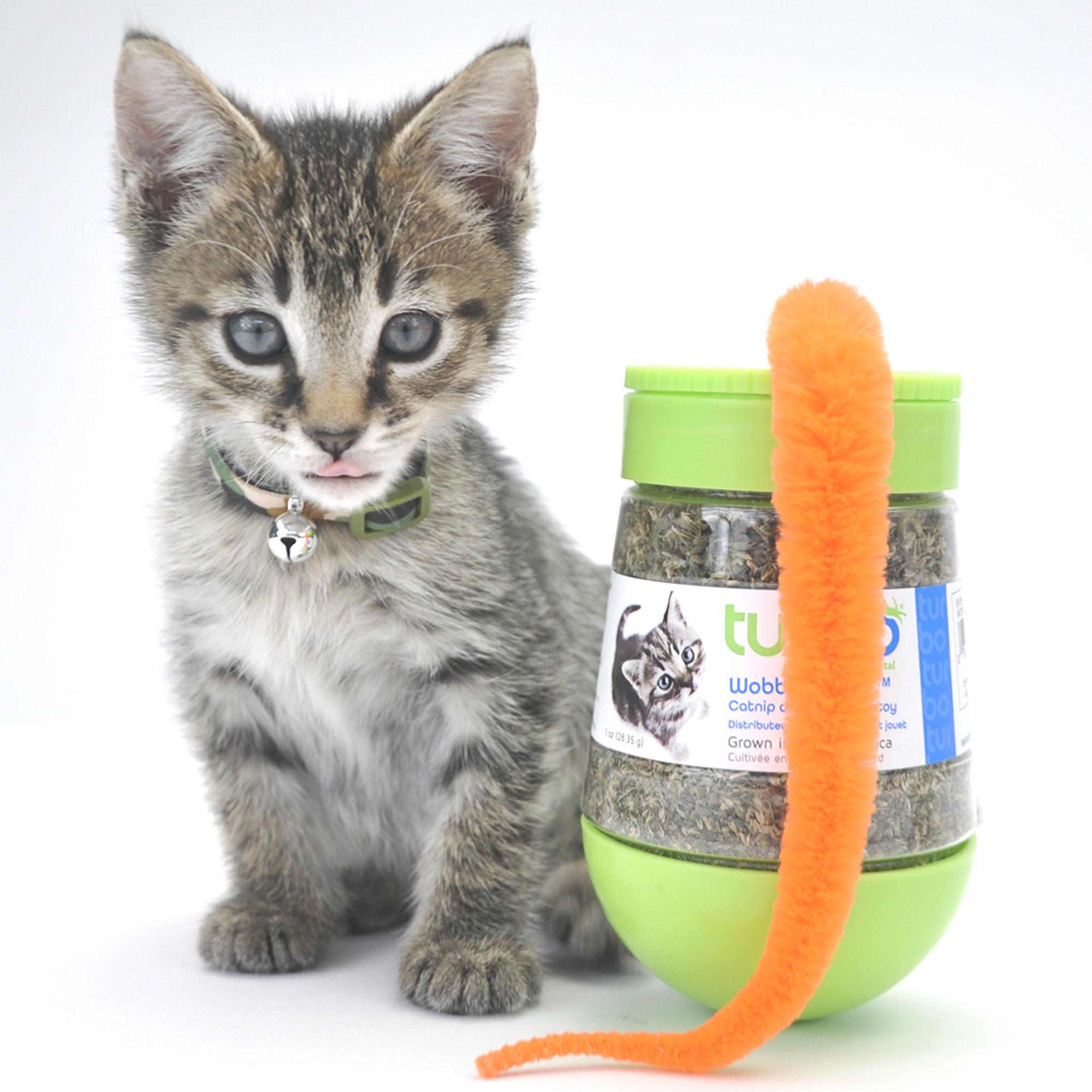Turbo Wobble Bottle Catnip Cat Toy