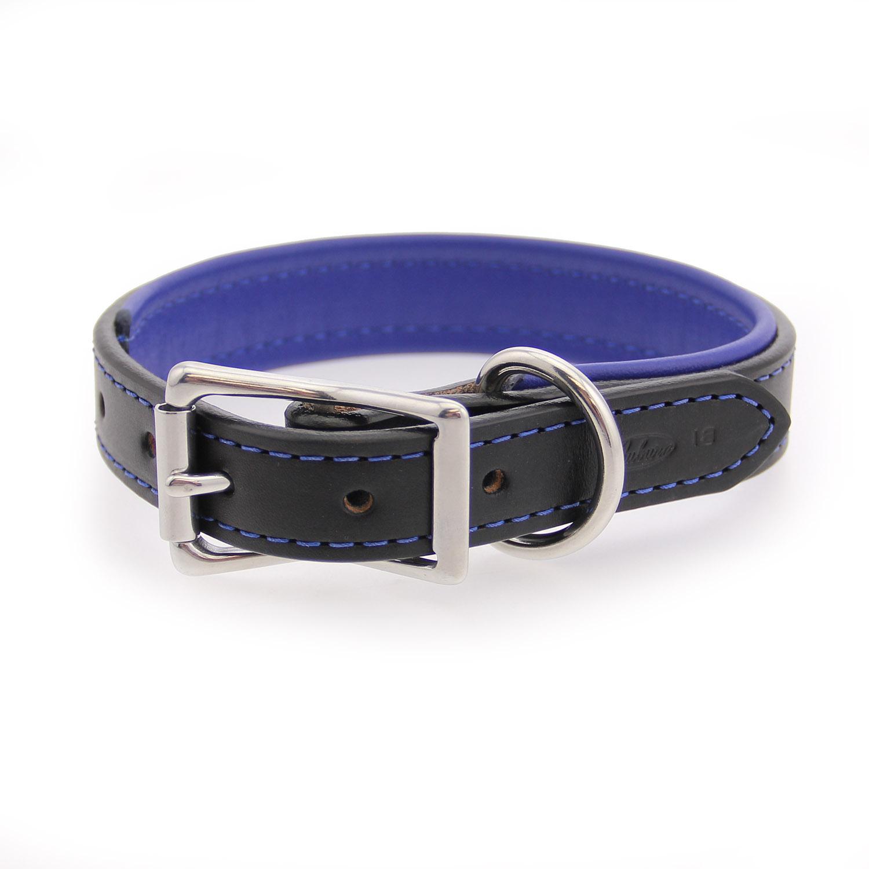Black Padded Leather Dog Collar
