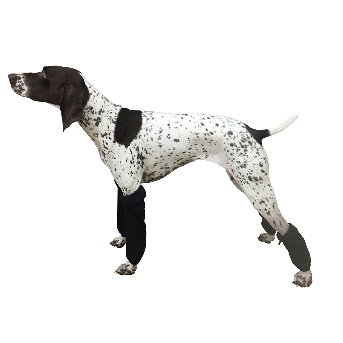 Ultra Paws Dog Leg Wraps - Black