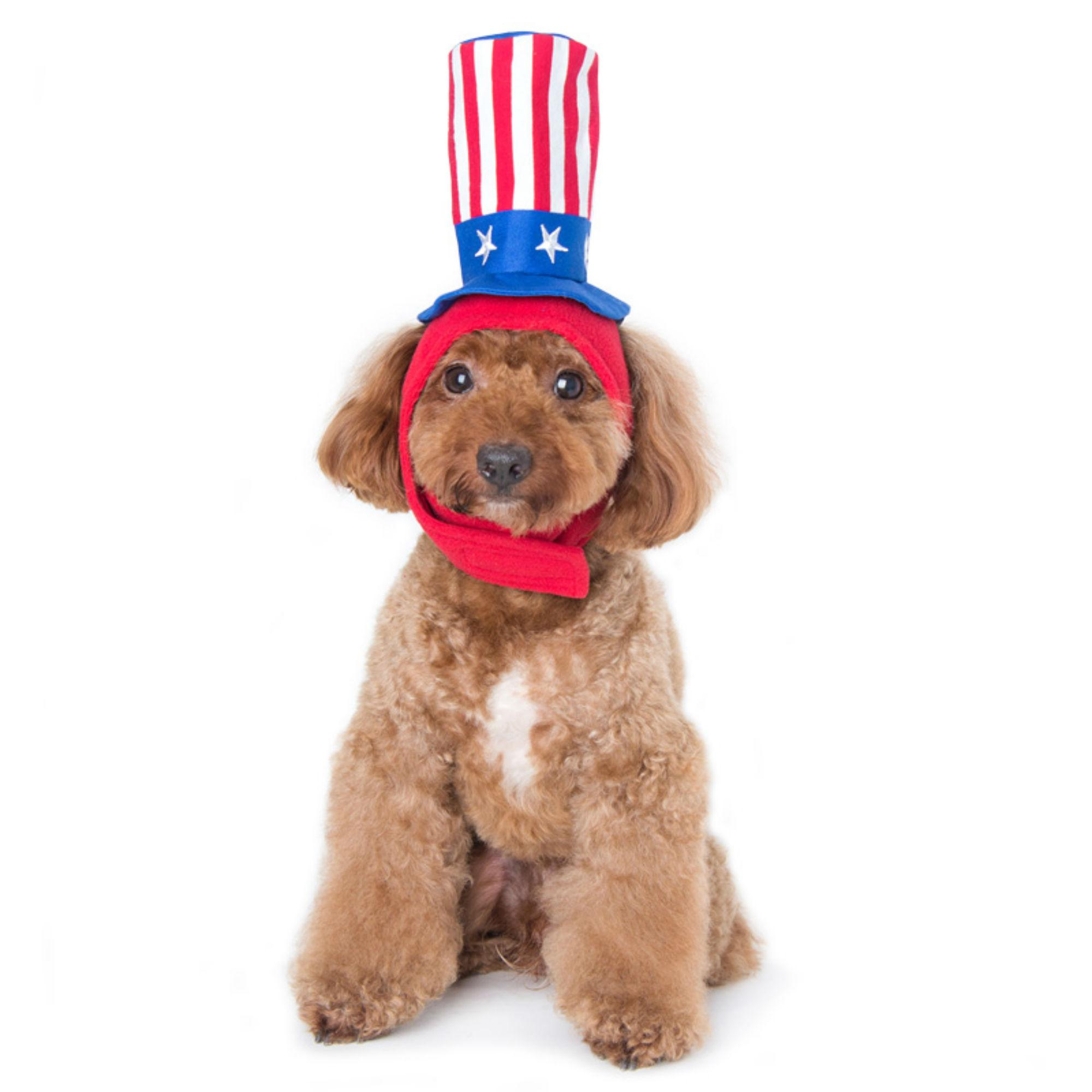 Uncle Sam Dog Hat by Dogo
