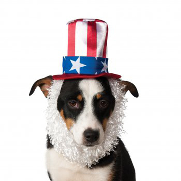 Uncle Sam Hat and Beard Dog Costume